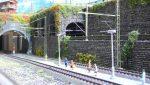 Plastico Ferroviario dD3002